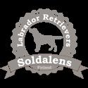 Soldalens Labradorinnoutajat